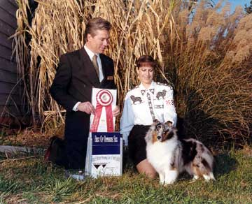 Best Of Opposite Sex To Best Of Breed - TSSC Specialty November 1999